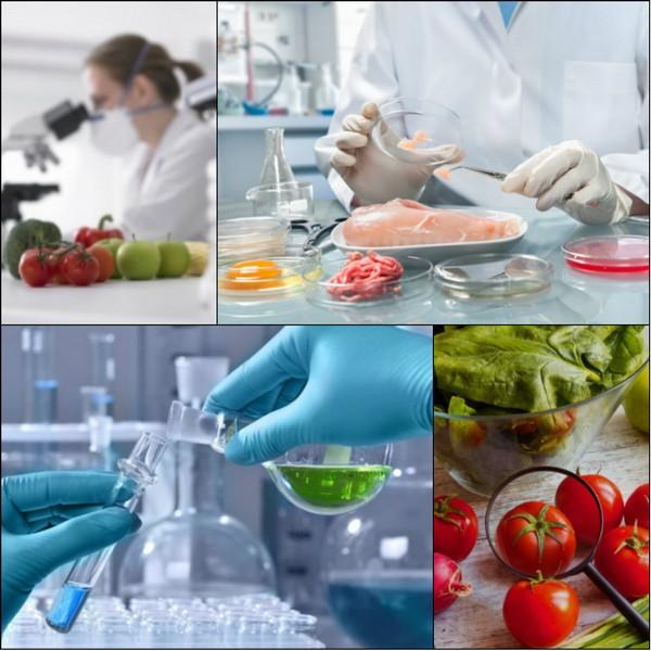 анализ пищевых продуктов